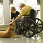 therapy-dog-is-pet-by-an-elderly-man-in-a-wheelchair-and-a-younger-woman-horizontal-shot